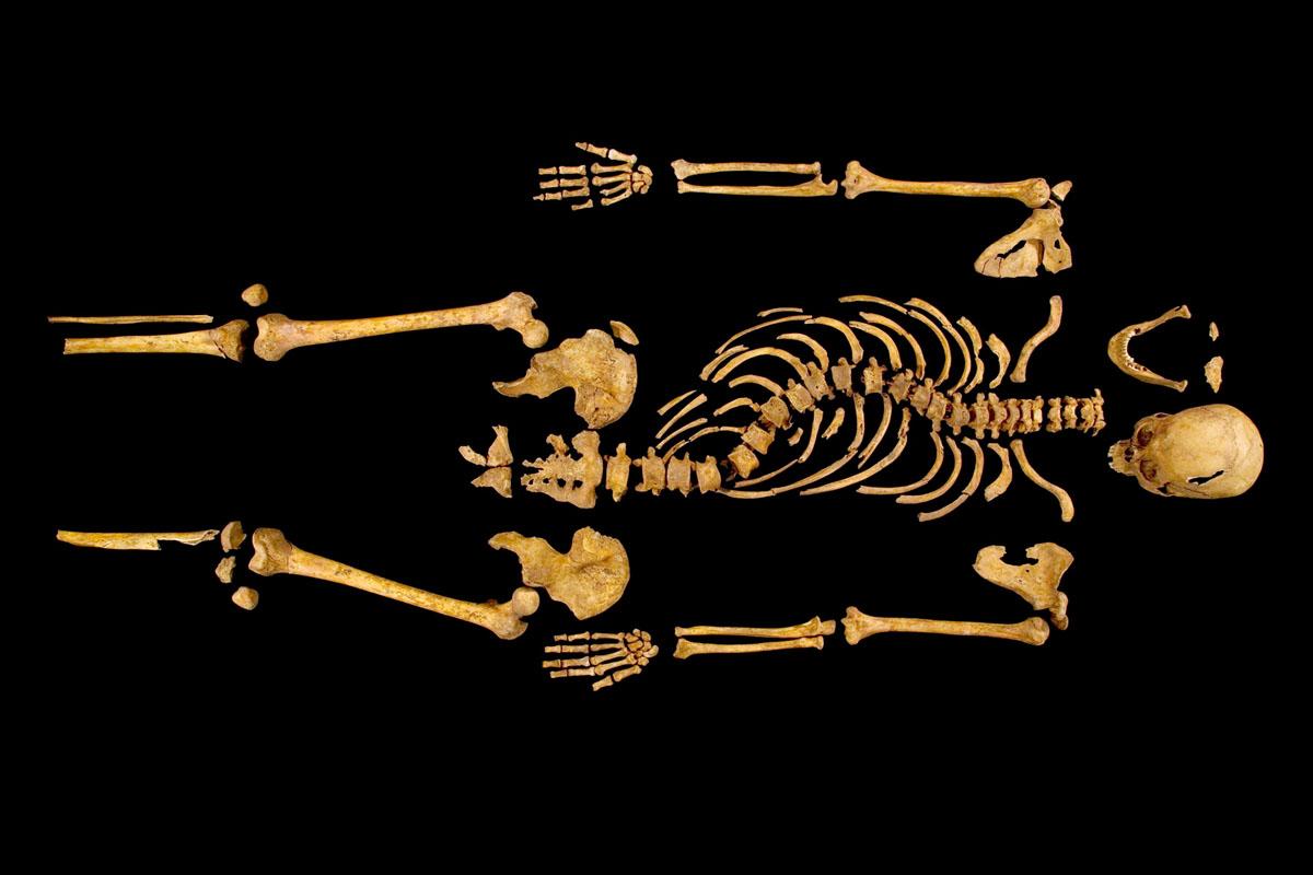 El esqueleto de Richard III, descubierto en Leicester en 2012 (Fotografía distribuida por la Universidad de Liecester) Mi reino por la posteridad: Richard III #culturaquemadura